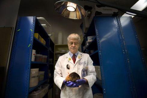 Dr. Aravich